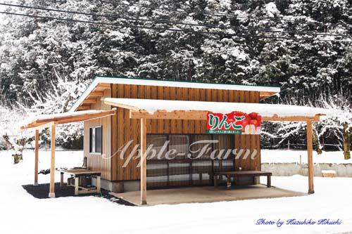 冬の直売所